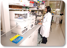 QC Scientists performs analyses in the Quality Control Laboratory