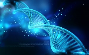 DNA Image from website header 2014