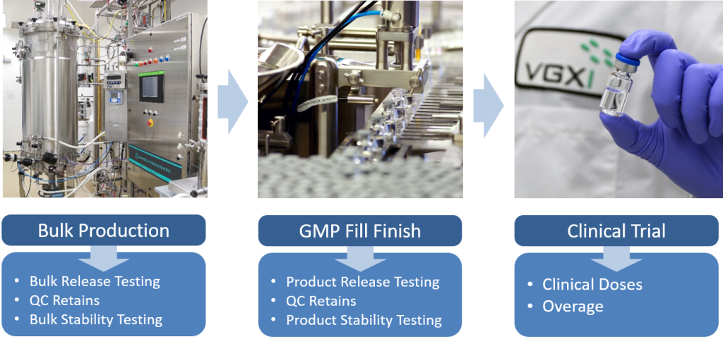 Considerations when determining the required plasmid production scale